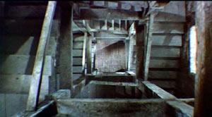 Image: Kim Novak in a scene from Vertigo.