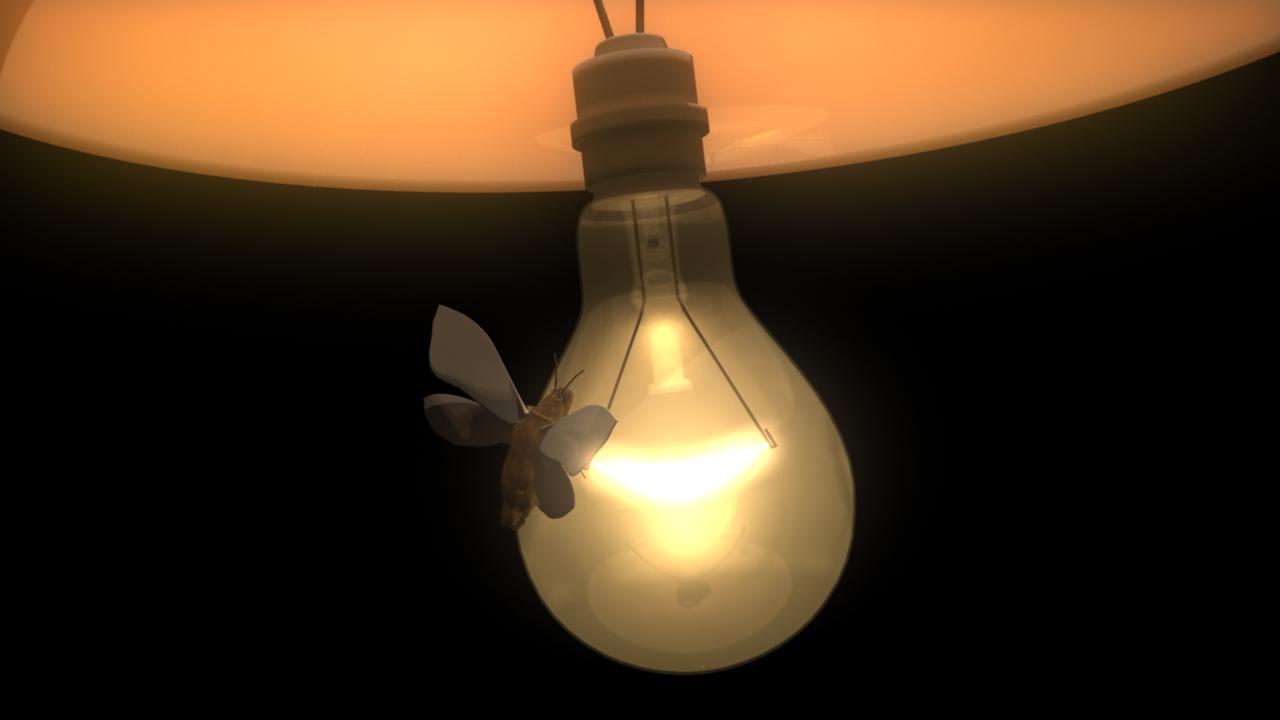 Project_Page:Light Bulb Demo,Lighting